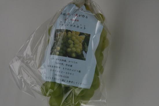 シャインマスカット家庭用ビニール袋