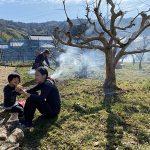 次郎柿の落葉と剪定枝の焼却